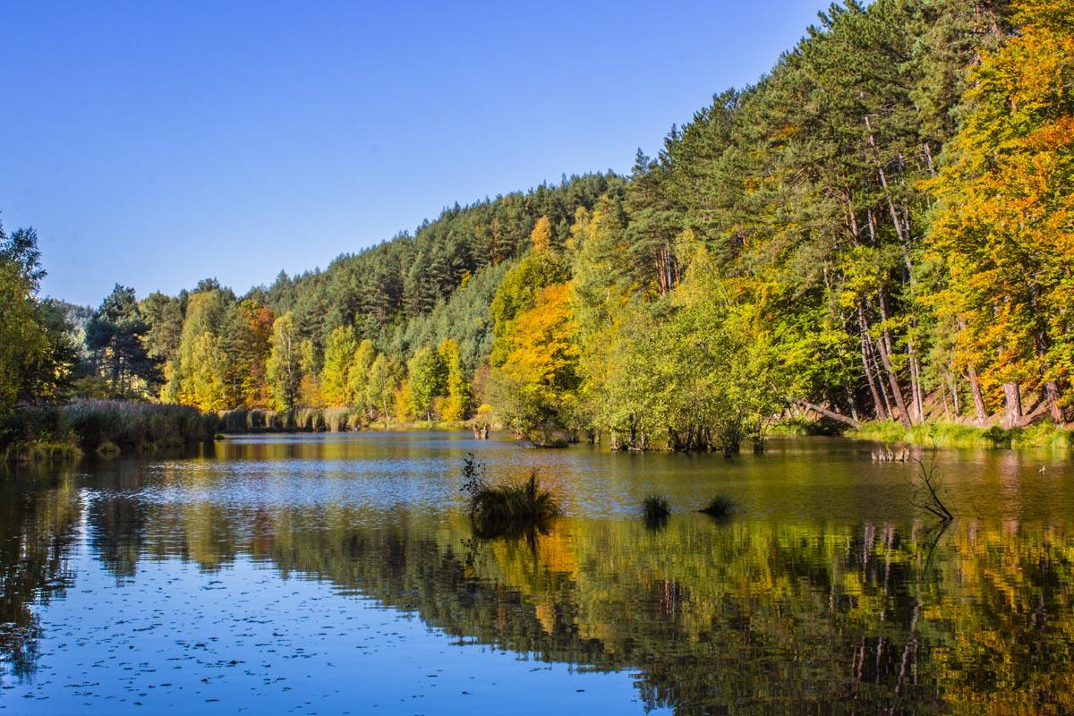 Fotografování krajiny - příroda v Českosaském Švýcarsku