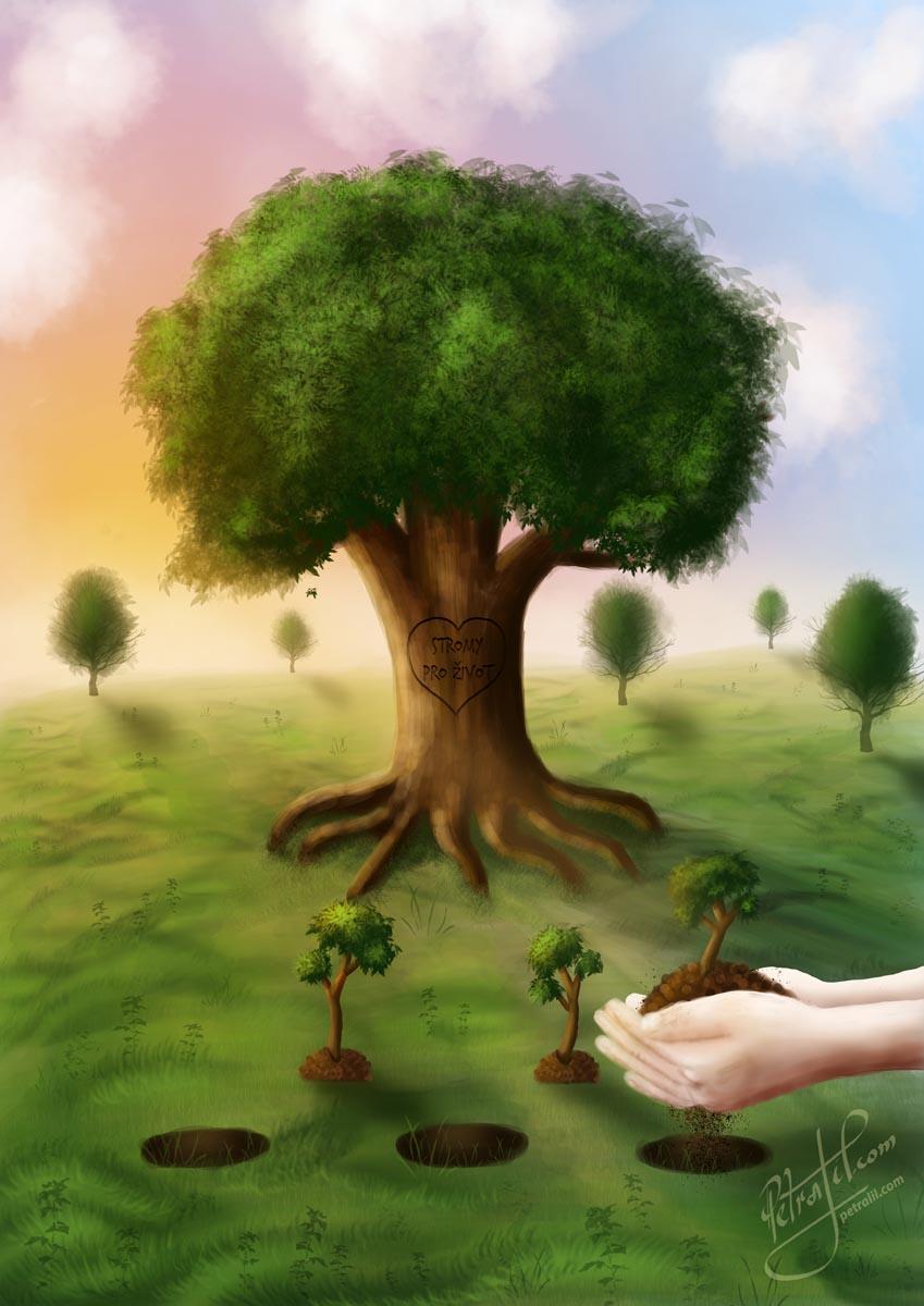 Digitální ilustrace Stromy pro život